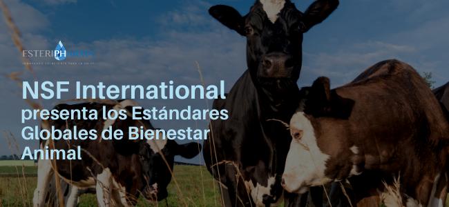 NSF-International-presenta-los-Estandares-Globales-de-Bienestar-Animal